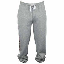 Pantalon de jogging Independent Bar Cross jogging Gris