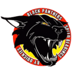 logo black panthers