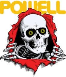 logo powell skull
