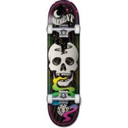 Skate complet Element Skull Trip 7.75″