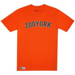 T-Shirt Zoo York Core Arch Orange Homme