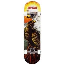 Skateboard débutants Tony Hawk 180 7.75″