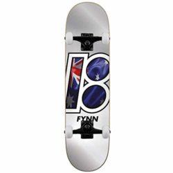 Skate complet Plan B Fynn Global 8.25″