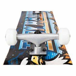 Skateboard Complet Tony Hawk Moonscape 8.0″ zoom