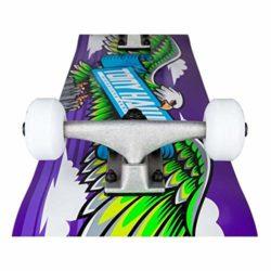 Skateboard Complet Tony Hawk Wingspan Purple 8.0″ zoom