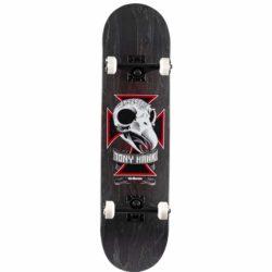 Skate complet Birdhouse Hawk Full Skull Stage 1 8.125″