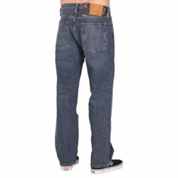 Jean Levi's Skateboarding Baggy 5 Pocket Se Bush back