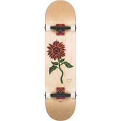 Skateboard complet Globe G2 Bloom Natural8.0″