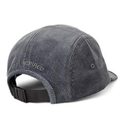 Polar Skate Co Cord Speed CaP Gris clair BACK
