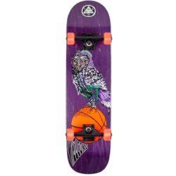 Skateboard complet Welcome Hooter Shooter Factory Violet 8.0″
