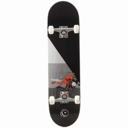 Skateboard complet Foundation Push Templeton 8.25″