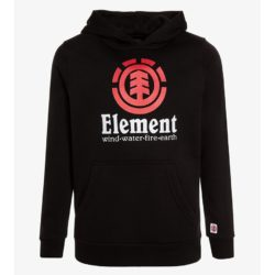 Sweat à Capuche Element Vertical Flint Black (Noir)