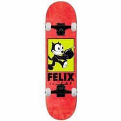 Skateboard Darkstar Felix Delivery rouge 8.0″