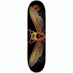 Planche de skateboard Powell Peralta Potter Wasp 247 deck 8.0″