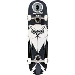 Skateboard complet Titus Blackbird Owl Mini Black Grey White7.5″