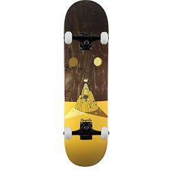 """Skateboard complet Magenta Jimmy Lannon Landscape 8.25"""""""
