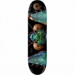 Planche de skateboard Powell Peralta Biss Bark Mantis deck 8.75″