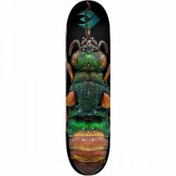 Planche de skateboard Powell Peralta Biss Ruby Tailed Wasp deck 8.5″