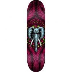 Planche de skateboard Powell Peralta Vallely Elephant Pink deck 8.25″