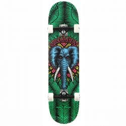Skateboard Complet Powell Peralta Vallely Elephant Green 8.0″