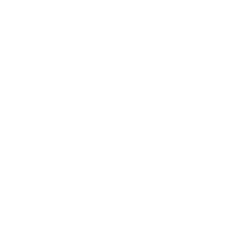 logo toy machine blanc